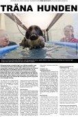 Hund och Husdjur - Bulldog Media Group AB - Page 4