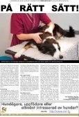 Hund och Husdjur - Bulldog Media Group AB - Page 5
