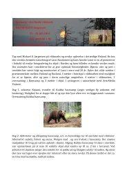 Bjørnetur i den finske vildmark 21. - 25. juli 2013 - Bio/Zoo Information