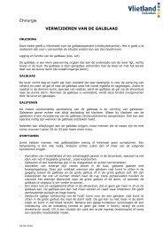Verwijderen galblaas.pdf - Vlietland Ziekenhuis