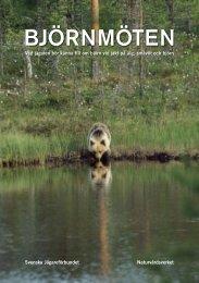Björnmöten - Vad jägaren bör känna till om björn ... - Rovviltportalen