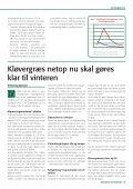 NYHEDSBREV - Heden & Fjorden - Page 5