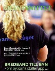 Artikel ur Gränssnittet 1/2010 (pdf) - Lantmäteriet