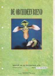 1994 - 3 - Orchideeën Vereniging Vlaanderen