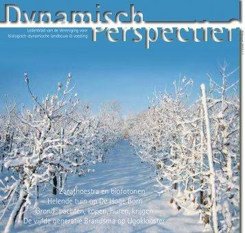 Dynamisch Perspectief 2010 - 1 - BD-Vereniging
