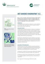 Faktaark om Kvadratnettet V.2 - Danmarks Statistik