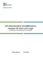 Att dokumentera socialtjänstens insatser för barn och unga - Region ...