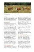 SVAvet nr 1 2013 Tema: Schmallenbergvirus - Page 5