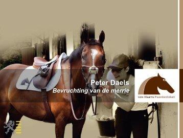Presentatie Peter Daels - Vlaams Paardenloket