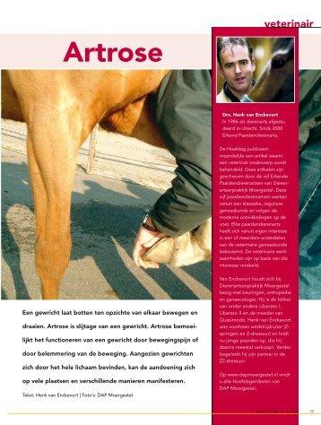 Artrose - Dierenartsenpraktijk Moergestel