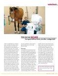 Artrose - Dierenartsenpraktijk Moergestel - Page 3