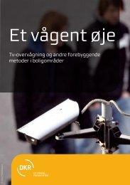 Hent PDF - Det Kriminalpræventive Råd