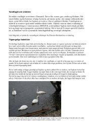 vinterfuglefodring - Dyrenes Beskyttelse
