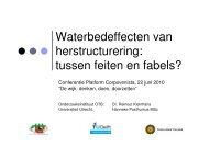 Waterbedeffecten van herstructurering: tussen feiten en fabels?