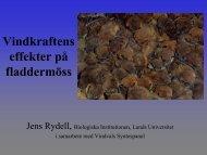 forskar- rapport - Vindbruk Dalsland