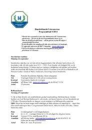 HandelsbanksVeteranerna Programblad 5/2011