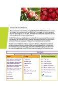 et Kennis - DLV Plant - Page 2