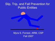 Slip, Trip, and Fall Prevention for Public Entities - Alabama ...
