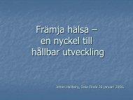 Johan Hallberg Kortversion Dala Floda[1].pdf