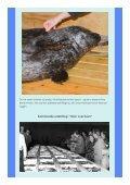 Nyhedsbrev januar 2013 - Fiskeri - Page 5