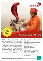 COBRA PDF brochure - BAUM Retec AG
