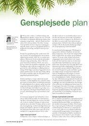 Gensplejsede plan - Aktuel Naturvidenskab