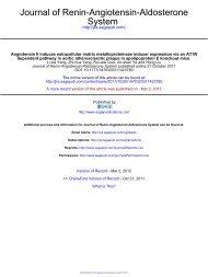 Angiotensin II induces extracellular matrix metalloproteinase inducer ...