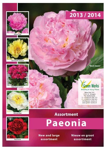 Catalogus Pioenen 2013 (pdf) - Green Works