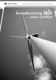 Årsredovisning 2008 - Umeå Energi AB