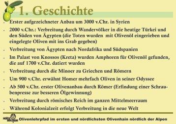 Den Olivenlehrpfad als öffnen - Baumschule Becker