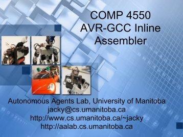 AVR-GCC Inline Assembler