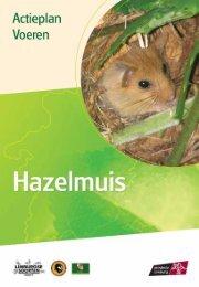 Voeren - hazelmuis - Provincie Limburg