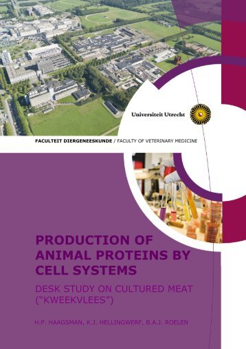 production of animal proteins by cell systems - New Harvest