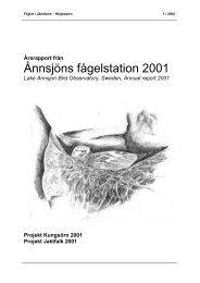 Årsrapport 2001 - Ånnsjöns fågelstation