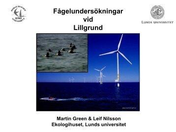 Kontrollprogram fåglar Martin Green, LU (PDF 3816 kB) - Vattenfall