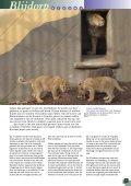 150 jaar Diergaarde Blijdorp - Vrienden van Blijdorp - Page 5