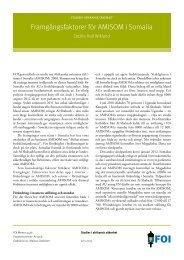 Framgångsfaktorer för AMISOM i Somalia - FOI