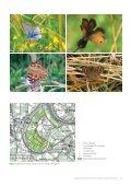 de Keent.pdf - Ecologisch adviesbureau Stachys - Page 5