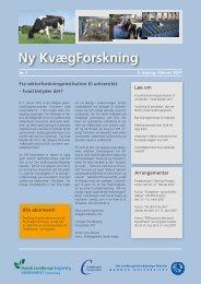 Ny Kvægforskning nr. 1, Februar 2007 - Kvægbrugets Forsøgscenter