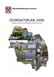 ÖVERSIKTSPLAN 2006 - Skinnskattebergs kommun