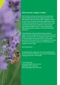 Groene plekjes - Cyclus NV - Page 4