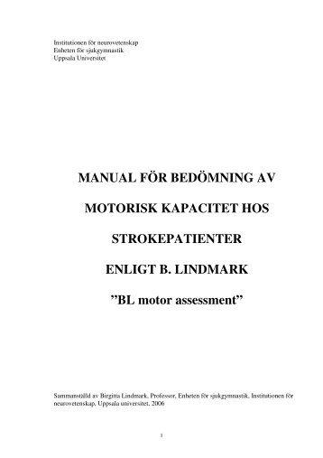 BL motor assessment