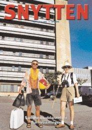 Snytten nr. 4 - 2002 - Sygehus Vendsyssel