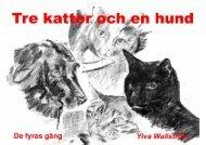 Tre katter och en hund - Läs en bok