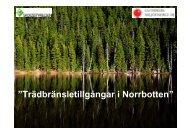Inventering av Norrbottens trädbränsletillgångar - Bioenergi Nord