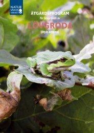 Åtgärdsprogram för bevarande av lövgroda - Regional Red List