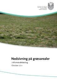 Nedsivning på græsarealer (åbner nyt vindue) (pdf 814 ... - Aarhus.dk