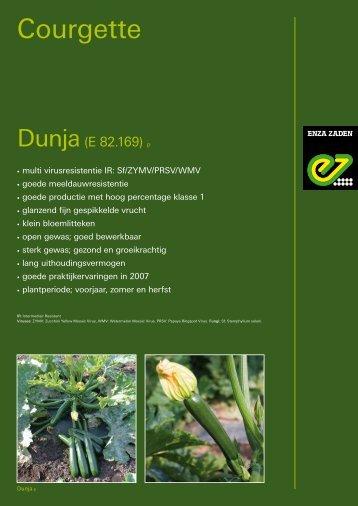 CourgettePDF - 193 kb - Enza Zaden