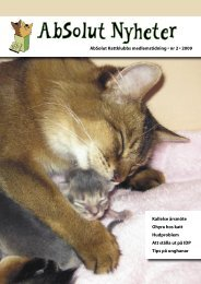 Nr 2/2009 - Absolut Kattklubb