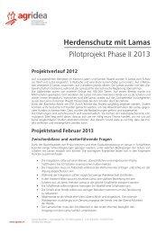 Lamas und Herdenschutz Projektskizze 2013